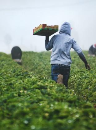 Preventing Modern Slavery & Human Trafficking