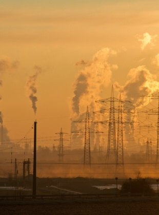 Public backs government to go further on climate action.